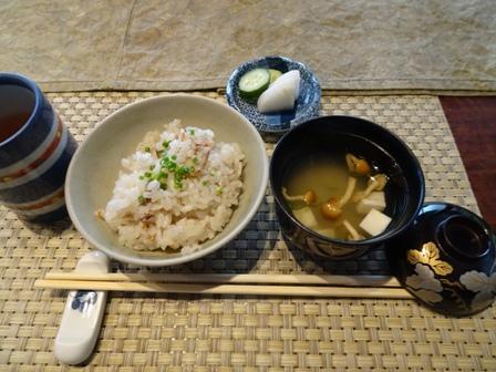ウサギ食事会5.JPG