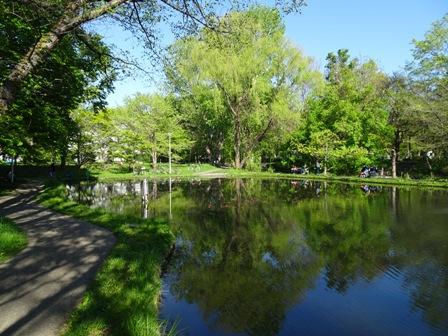 キャンパスの池2.JPG
