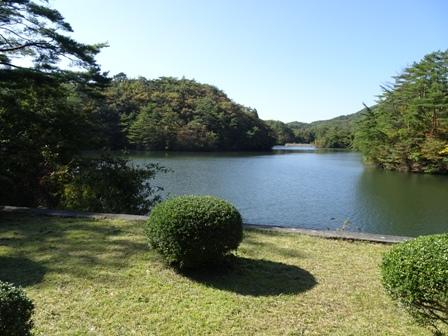 公園の池.JPG