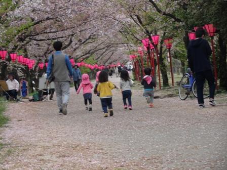 園児と桜3.JPG
