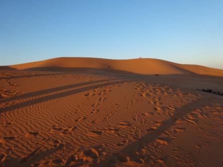 夜明けの砂漠.jpg