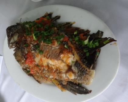 料理魚の.jpg