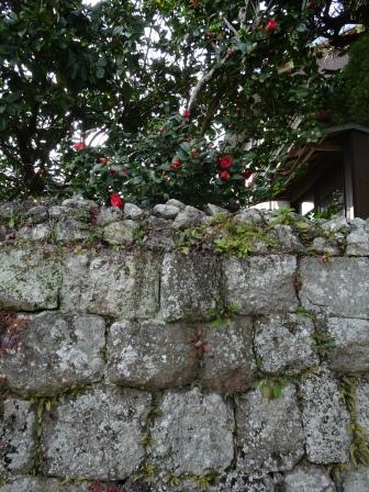 武家屋敷石垣1.JPG