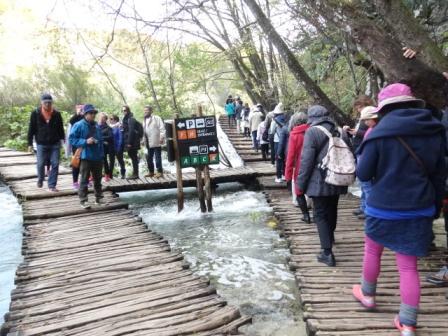 滝の道(4).jpg