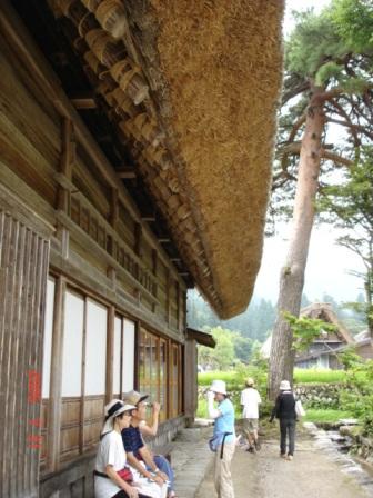 白川茅葺の屋根.jpg