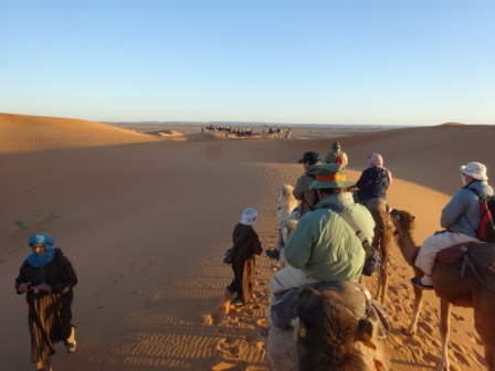 砂漠の終直液.jpg