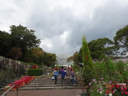 秋植物公園イベント.jpg