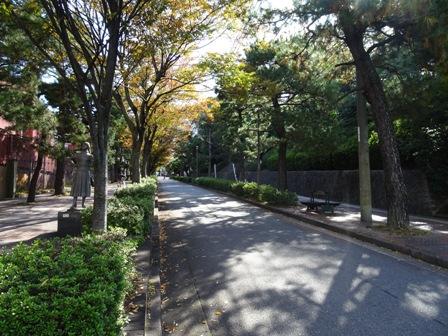 美術館通り.JPG
