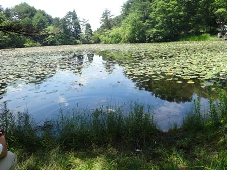 蛇の池.jpg