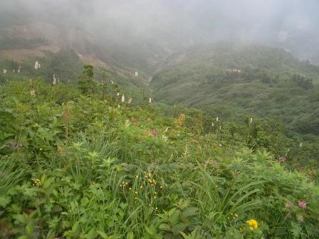 霧の間に.jpg