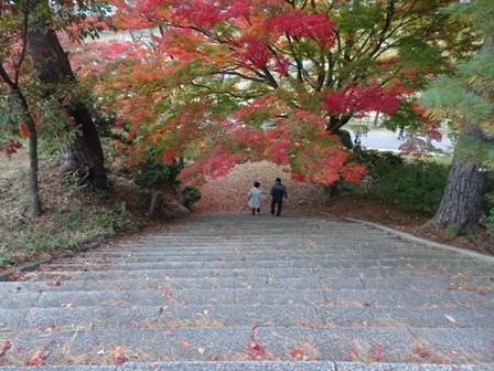 1村松公園.JPG