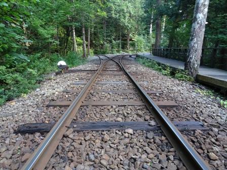 1森林鉄道.JPG