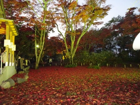 1長岡紅葉園.JPG