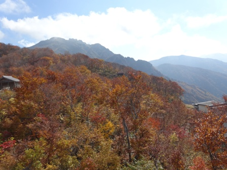 2八海山.jpg