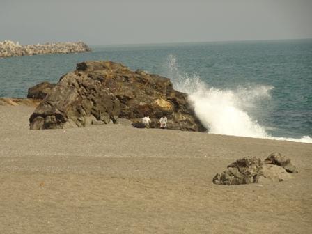 2桂が浜.JPG