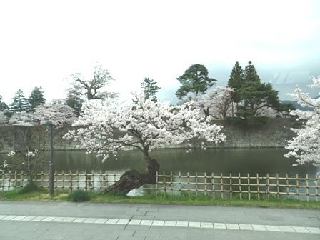 2鶴ヶ城お堀端.JPG