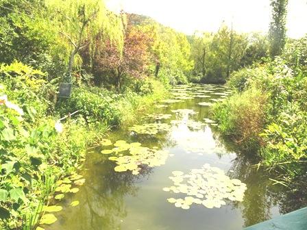 4モネの庭.JPG